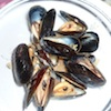Mussels in Black Bean Sauce Recipe
